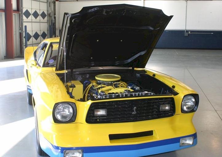 Une Mustang Monroe Handler II